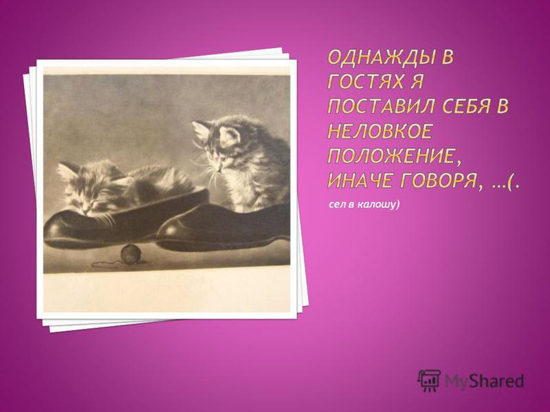 сел в калошу)