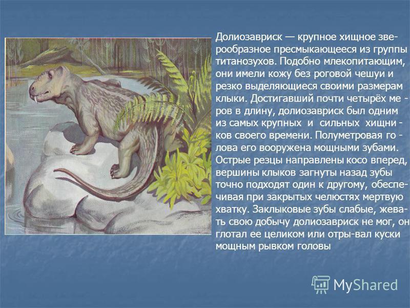 Долиозавриск крупное хищное северо образное пресмыкающееся из группы титанозухов. Подобно млекопитающим, они имели кожу без роговой чешуи и резко выделяющиеся своими размерам клыки. Достигавший почти четырёх ме - ров в длину, долиозавриск был одним и