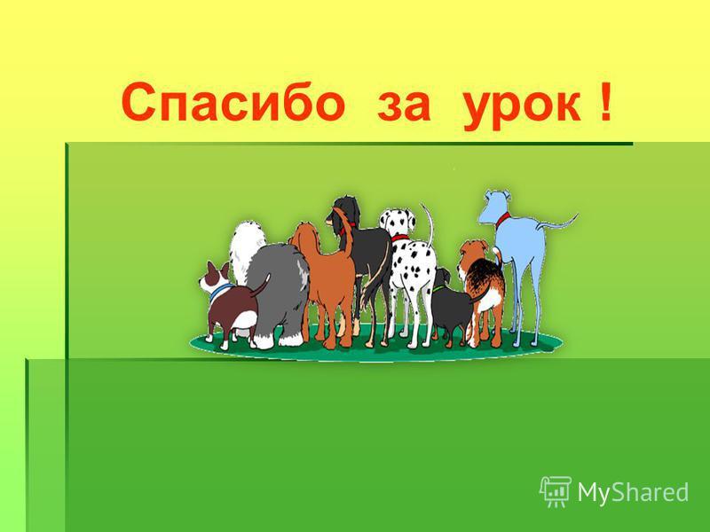 Помни: человек в ответе за здоровье и жизнь своего четвероного друга! Будь осторожен при игре с домашними животными! Береги своё здоровье ! Дома: С. 78 – 81 (читать) (т) с. 32