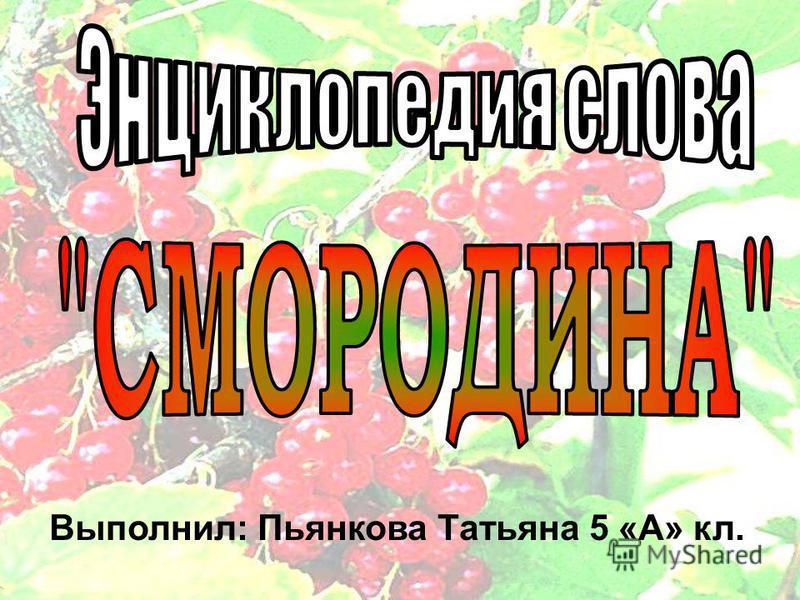 Выполнил: Пьянкова Татьяна 5 «А» кл.