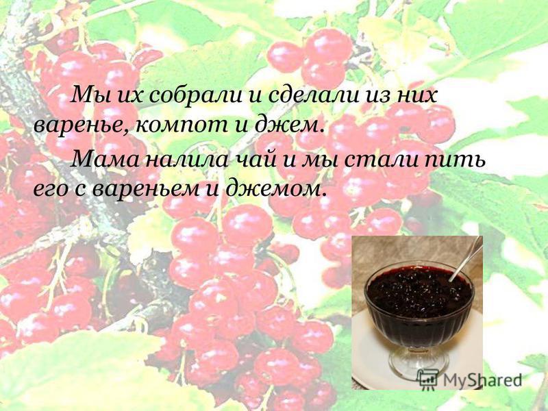 Мы их собрали и сделали из них варенье, компот и джем. Мама налила чай и мы стали пить его с вареньем и джемом.