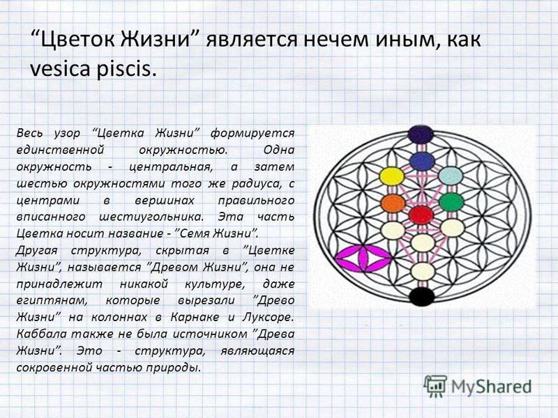 Цветок Жизни является нечем иным, как vesica piscis. Весь узор Цветка Жизни формируется единственной окружностью. Одна окружность - центральная, а затем шестью окружностями того же радиуса, с центрами в вершинах правильного вписанного шестиугольника.