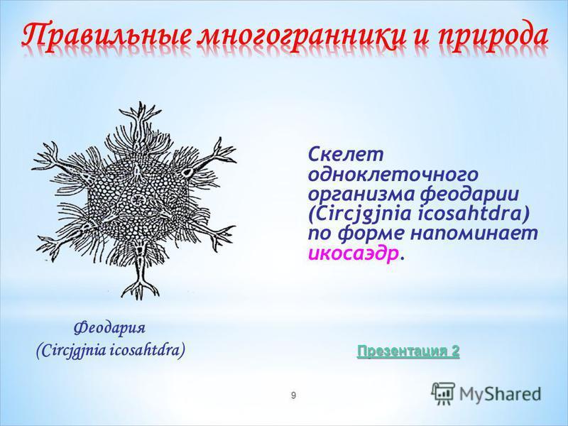 9 Скелет одноклеточного организма феодарии (Circjgjnia icosahtdra) по форме напоминает икосаэдр. Феодария (Circjgjnia icosahtdra) Презентация 2 Презентация 2