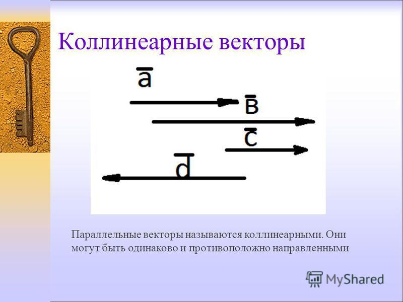 Коллинеарные векторы Параллельные векторы называются коллинеарными. Они могут быть одинаково и противоположно направленными
