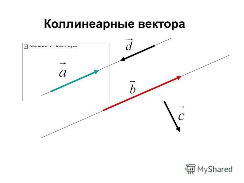 Коллинеарные вектора
