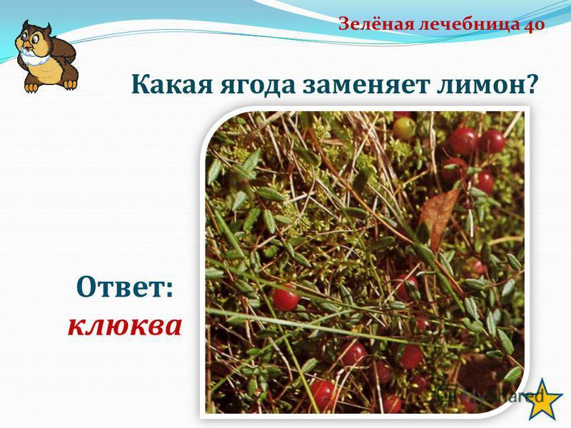 Зелёная лечебница 40 Ответ: клюква Какая ягода заменяет лимон?