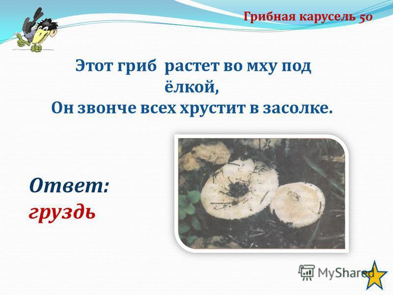 Грибная карусель 50 Этот гриб растет во мху под ёлкой, Он звонче всех хрустит в засолке. Ответ: груздь