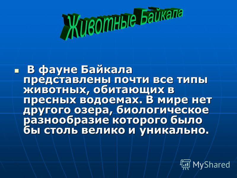 В фауне Байкала представлены почти все типы животных, обитающих в пресных водоемах. В мире нет другого озера, биологическое разнообразие которого было бы столь велико и уникально. В фауне Байкала представлены почти все типы животных, обитающих в прес