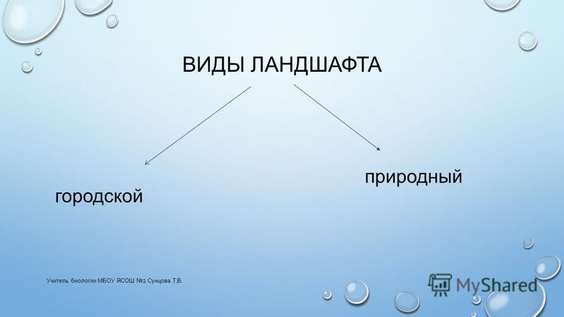 ВИДЫ ЛАНДШАФТА Учитель биологии МБОУ ЯСОШ 2 Сунцова Т. В. городской природный