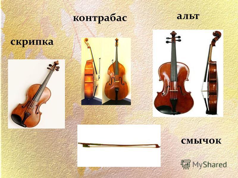 альт контрабас скрипка смычок