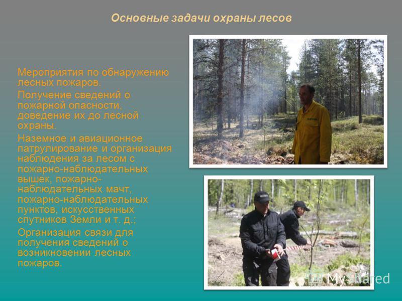 Мероприятия по обнаружению лесных пожаров. Получение сведений о пожарной опасности, доведение их до лесной охраны. Наземное и авиационное патрулирование и организация наблюдения за лесом с пожарно-наблюдательных вышек, пожарно- наблюдательных мачт, п