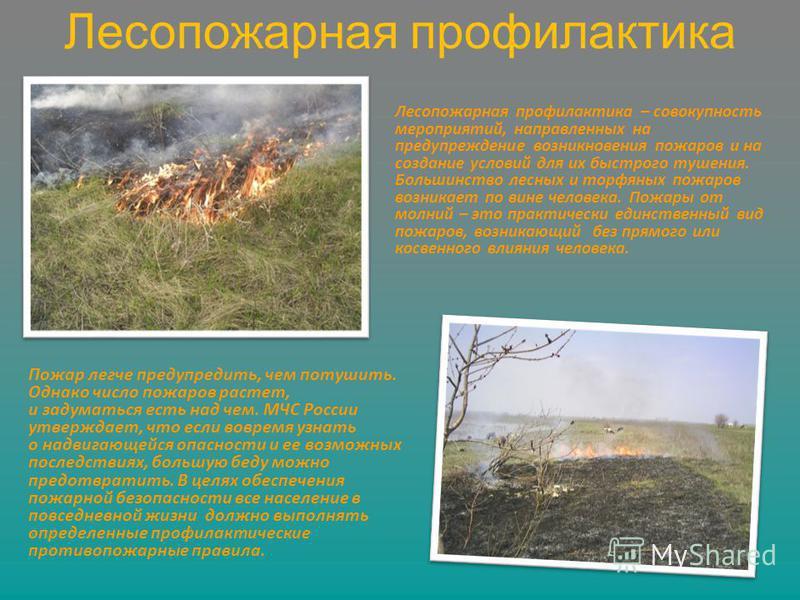 Лесопожарная профилактика Лесопожарная профилактика – совокупность мероприятий, направленных на предупреждение возникновения пожаров и на создание условий для их быстрого тушения. Большинство лесных и торфяных пожаров возникает по вине человека. Пожа