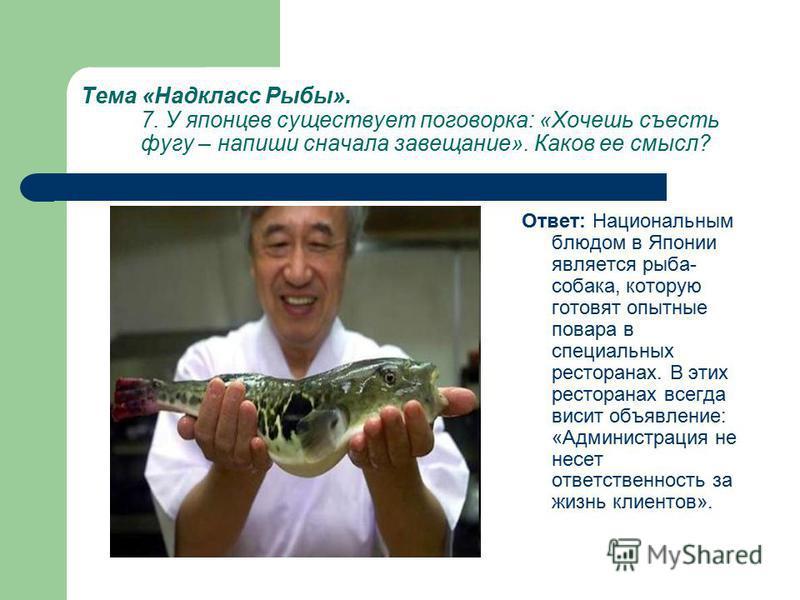 Тема «Надкласс Рыбы». 7. У японцев существует поговорка: «Хочешь съесть фугу – напиши сначала завещание». Каков ее смысл? Ответ: Национальным блюдом в Японии является рыба- собака, которую готовят опытные повара в специальных ресторанах. В этих ресто