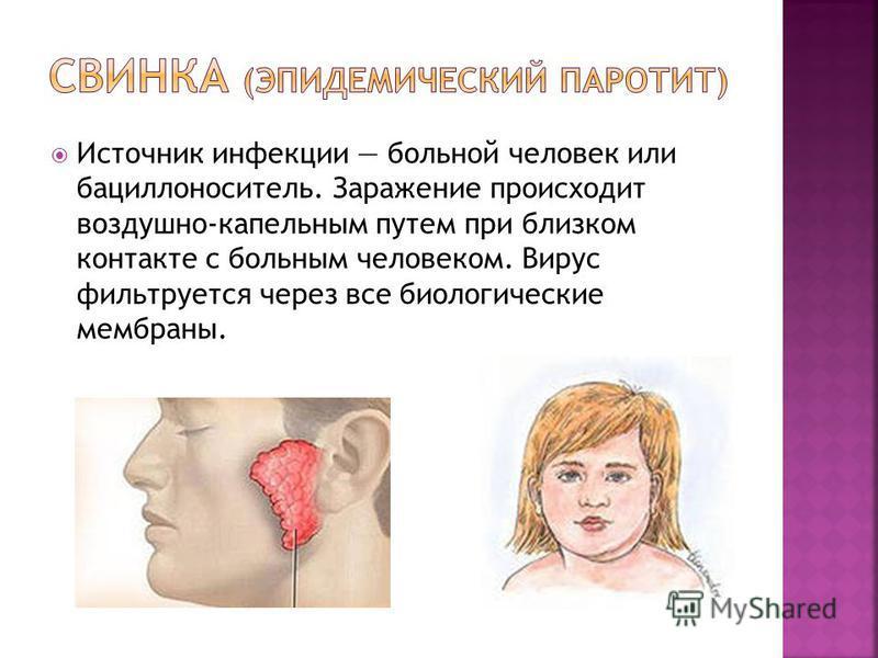 Источник инфекции больной человек или бациллоноситель. Заражение происходит воздушно-капельным путем при близком контакте с больным человеком. Вирус фильтруется через все биологические мембраны.