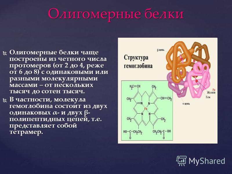 Олигомерные белки Олигомерные белки чаще построены из четного числа протомеров (от 2 до 4, реже от 6 до 8) с одинаковыми или разными молекулярными массами – от нескольких тысяч до сотен тысяч. Олигомерные белки чаще построены из четного числа протоме