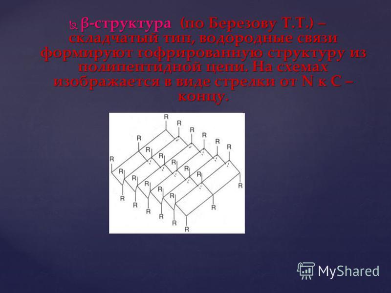 β-структура (по Березову Т.Т.) – складчатый тип, водородные связи формируют гофрированную структуру из полипептидной цепи. На схемах изображается в виде стрелки от N к С – концу. β-структура (по Березову Т.Т.) – складчатый тип, водородные связи форми
