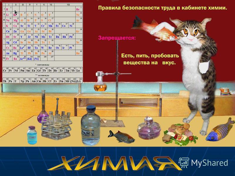 Химия – наука классная, Химия – наука классная, но для невежд она опасная! но для невежд она опасная!
