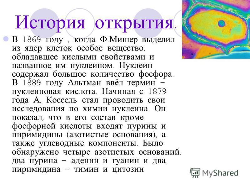 История открытия. В 1869 году, когда Ф. Мишер выделил из ядер клеток особое вещество, обладавшее кислыми свойствами и названное им нуклеином. Нуклеин содержал большое количество фосфора. В 1889 году Альтман ввёл термин – нуклеиновая кислота. Начиная
