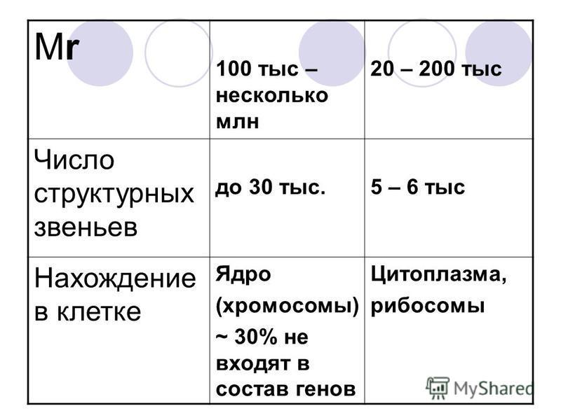 МrМr 100 тыс – несколько млн 20 – 200 тыс Число структурных звеньев до 30 тыс.5 – 6 тыс Нахождение в клетке Ядро (хромосомы) ~ 30% не входят в состав генов Цитоплазма, рибосомы