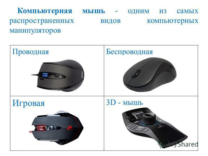 Компьютерная мышь - одним из самых распространенных видов компьютерных манипуляторов Проводная Беспроводная Игровая 3D - мышь