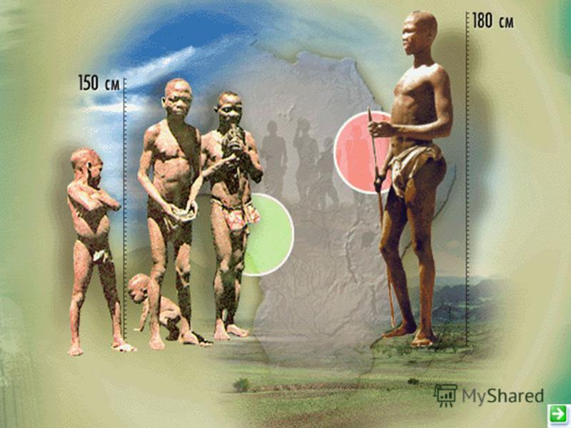Население Коренное Пришлое
