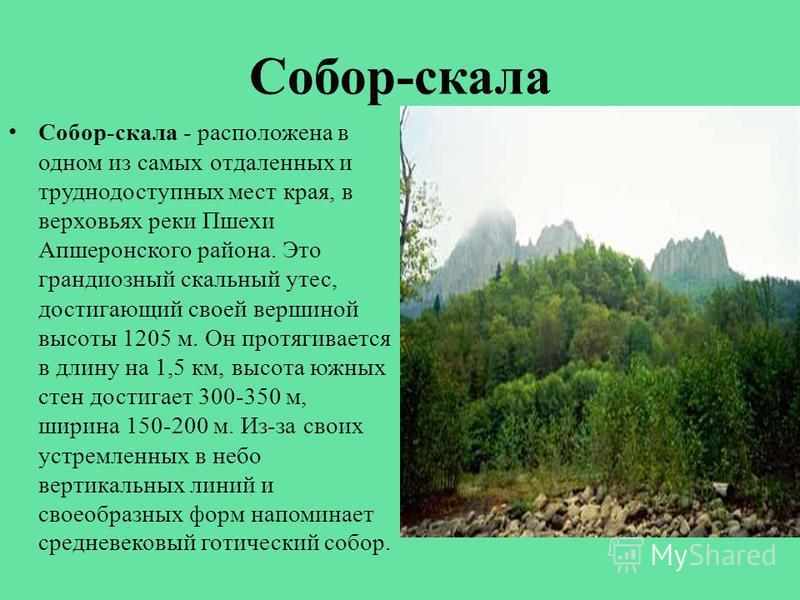Собор-скала Собор-скала - расположена в одном из самых отдаленных и труднодоступных мест края, в верховьях реки Пшехи Апшеронского района. Это грандиозный скальный утес, достигающий своей вершиной высоты 1205 м. Он протягивается в длину на 1,5 км, вы