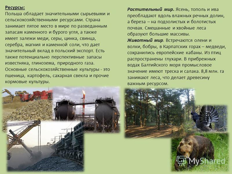 Ресурсы: Польша обладает значительными сырьевыми и сельскохозяйственными ресурсами. Страна занимает пятое место в мире по разведанным запасам каменного и бурого угля, а также имеет залежи меди, серы, цинка, свинца, серебра, магния и каменной соли, чт