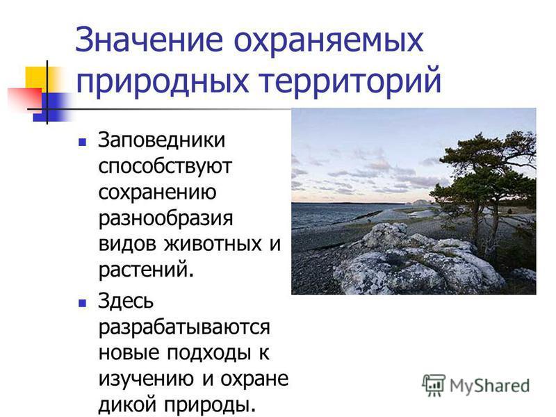 Исторические заповедные места… Государственный музей-заповедник Павловск. Петрозаводск