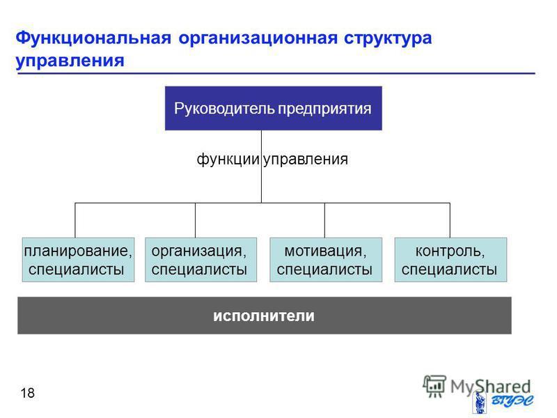 Функциональная организационная структура управления 18 Руководитель предприятия планирование, специалисты исполнители организация, специалисты мотивация, специалисты контроль, специалисты функции управления