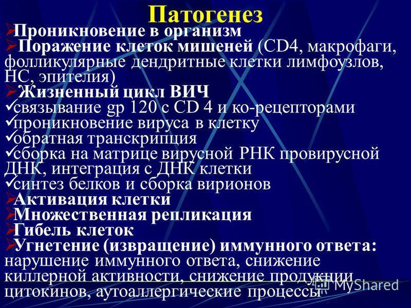 Патогенез Проникновение в организм Поражение клеток мишеней (CD4, макрофаги, фолликулярные дендритные клетки лимфоузлов, НС, эпителия) Жизненный цикл ВИЧ связывание gp 120 с CD 4 и ко-рецепторами проникновение вируса в клетку обратная транскрипция сб