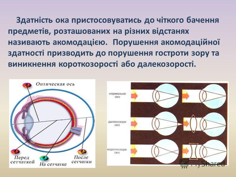 Здатність ока пристосовуватись до чіткого бачення предметів, розташованих на різних відстанях називають акомодацією. Порушення акомодаційної здатності призводить до порушення гостроти зору та виникнення короткозорості або далекозорості.