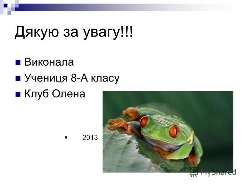 Дякую за увагу!!! Виконала Учениця 8-А класу Клуб Олена 2013