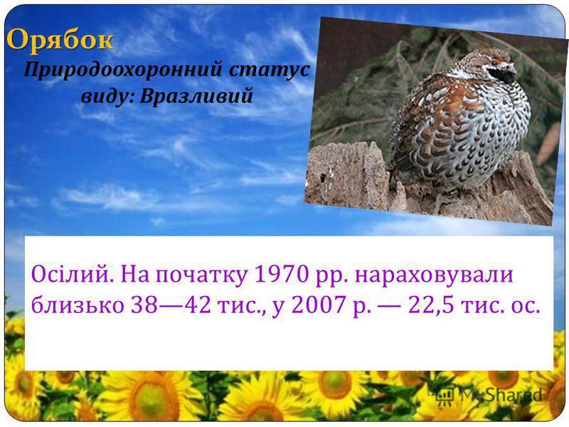 Орябок Осілий. На початку 1970 рр. нараховували близько 3842 тис., у 2007 р. 22,5 тис. ос. Природоохоронний статус виду : Вразливий