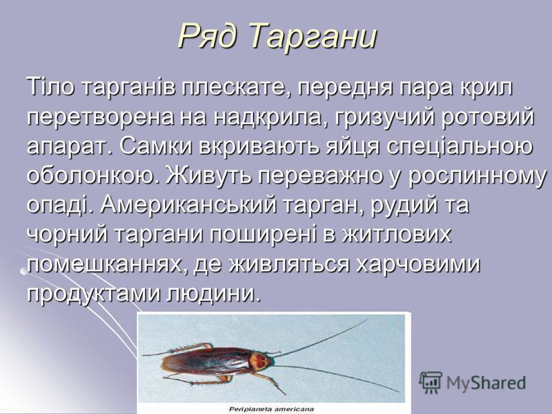 Ряд Таргани Тіло тарганів плескате, передня пара крил перетворена на надкрила, гризучий ротовий апарат. Самки вкривають яйця спеціальною оболонкою. Живуть переважно у рослинному опаді. Американський тарган, рудий та чорний таргани поширені в житлових