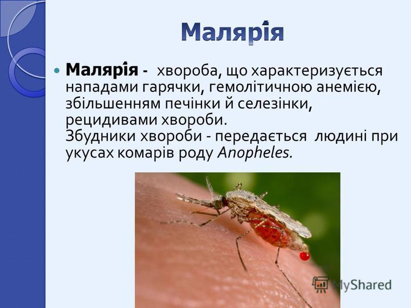 Малярія - хвороба, що характеризується нападами гарячки, гемолітичною анемією, збільшенням печінки й селезінки, рецидивами хвороби. Збудники хвороби - передається людині при укусах комарів роду Anopheles.