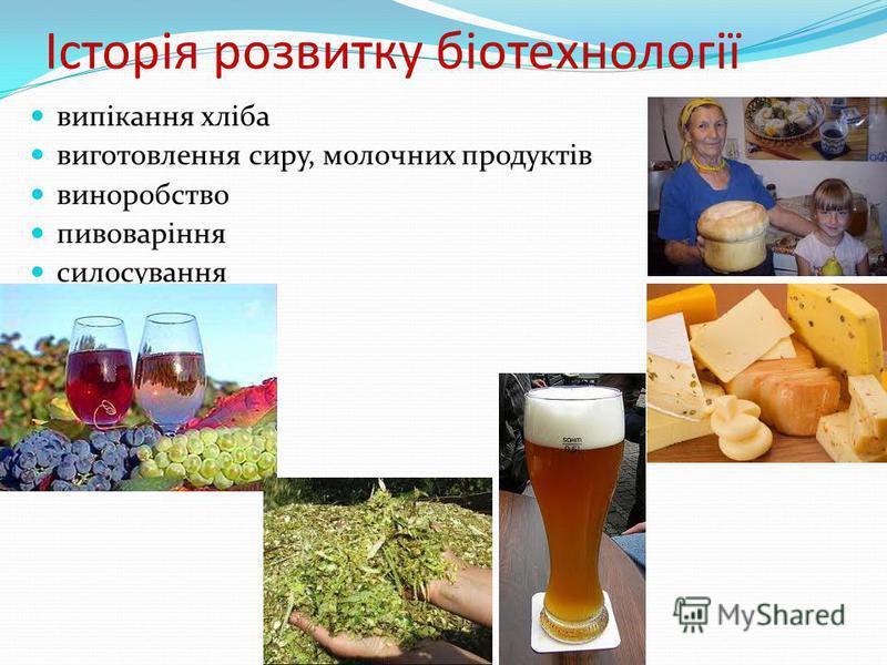 Історія розвитку біотехнології випікання хліба виготовлення сиру, молочних продуктів виноробство пивоваріння силосування