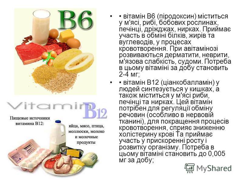 вітамін В6 (піродоксин) міститься у м'ясі, рибі, бобових рослинах, печінці, дріжджах, нирках. Приймає участь в обміні білків, жирів та вуглеводів, у процесах кровотворення. При авітамінозі розвиваються дерматити, неврити, м'язова слабкість, судоми. П