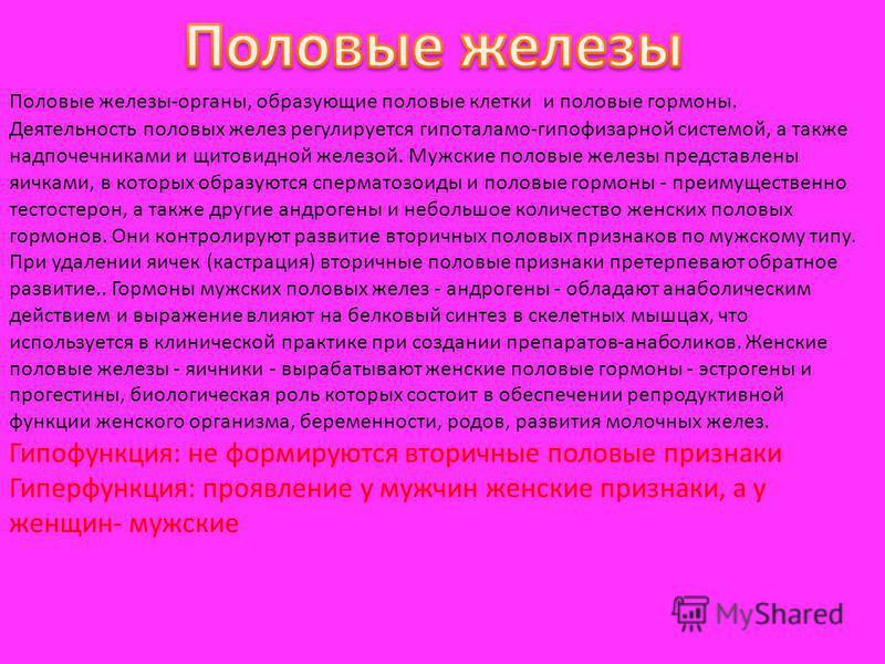 Половые железы-органы, образующие половые клетки и половые гормоны. Деятельность половых желез регулируется гипоталамо-гипофизарной системой, а также надпочечниками и щитовидной железой. Мужские половые железы представлены яичками, в которых образуют