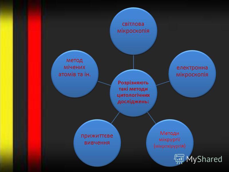 Розрізняють такі методи цитологічних досліджень: світлова мікроскопія електронна мікроскопія Методи мікрургії ( мікрохірургі я) прижиттєве вивчення метод мічених атомів та ін.