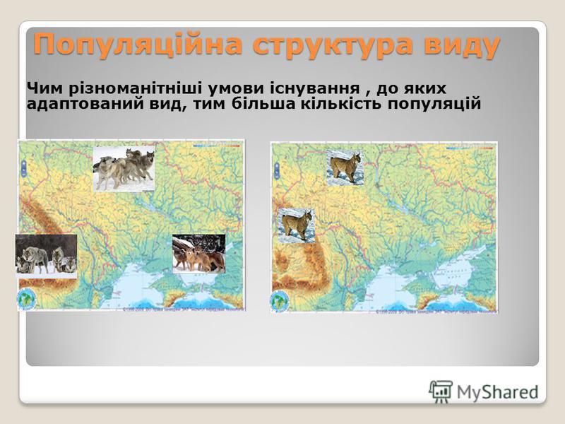 Популяційна структура виду Чим різноманітніші умови існування, до яких адаптований вид, тим більша кількість популяцій Популяції вовка в Україні
