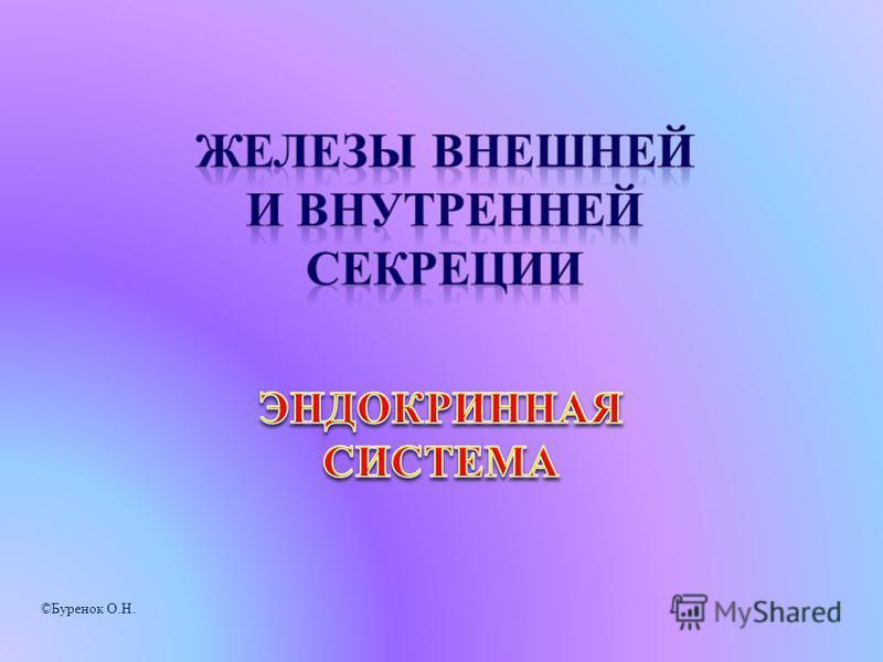 ©Буренок О.Н.