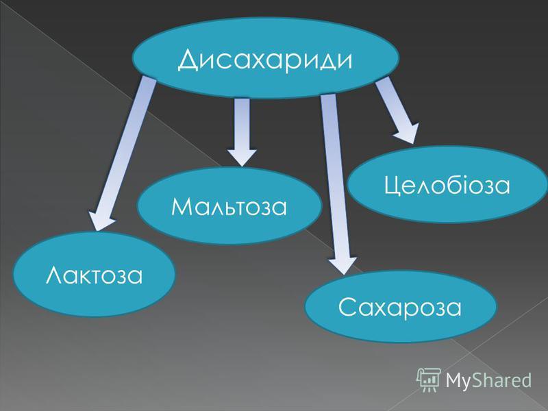 Дисахариди Лактоза Сахароза Целобіоза Мальтоза