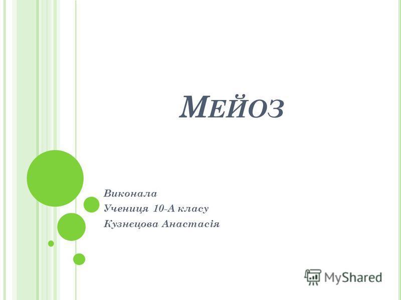 М ЕЙОЗ Виконала Учениця 10-А класу Кузнєцова Анастасія