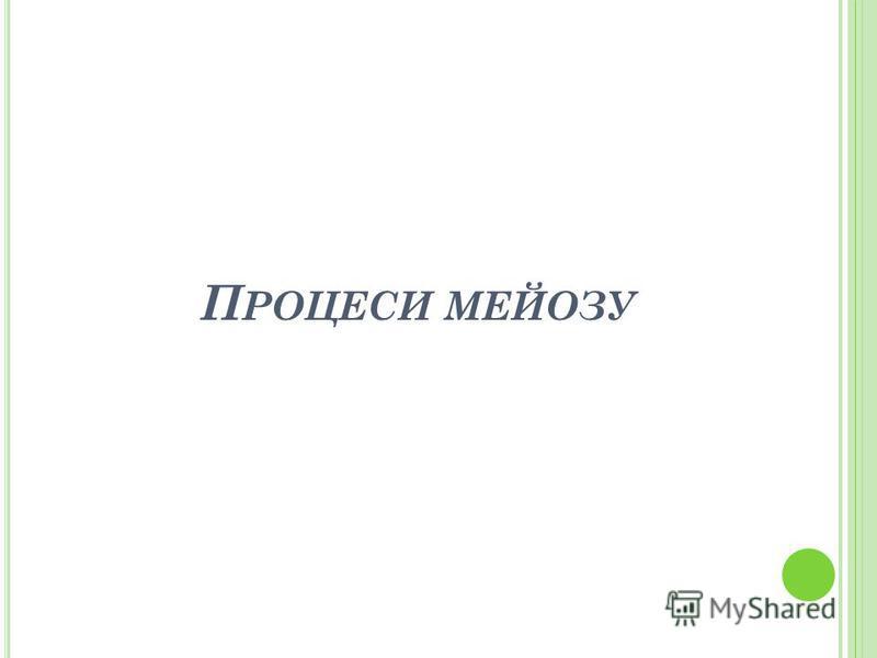 П РОЦЕСИ МЕЙОЗУ
