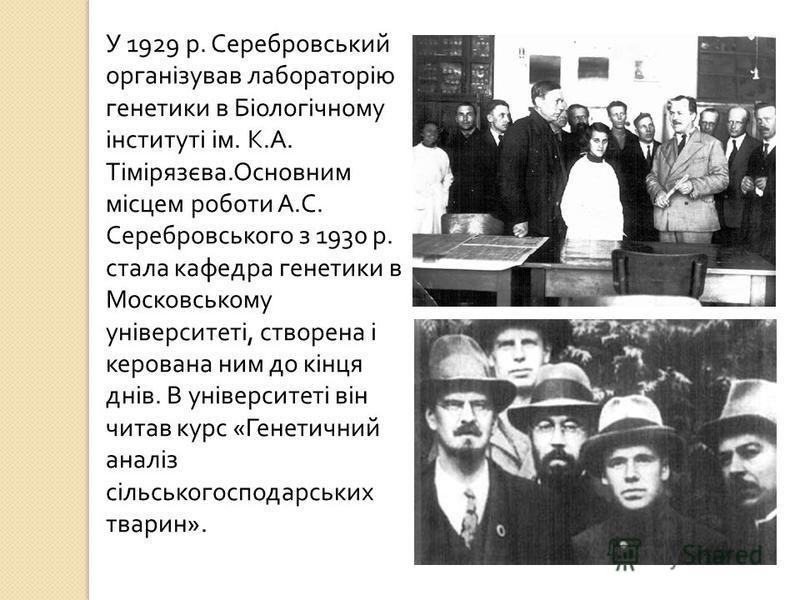 У 1929 р. Серебровський організував лабораторію генетики в Біологічному інституті ім. К. А. Тімірязєва. Основним місцем роботи А. С. Серебровського з 1930 р. стала кафедра генетики в Московському університеті, створена і керована ним до кінця днів. В