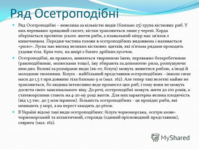 Ряд Осетроподібні Ряд Осетроподібні – невелика за кількістю видів (близько 25) група кісткових риб. У них переважно хрящовий скелет, кістки трапляються лише у черепі. Хорда зберігається протягом усього життя риби, а плавальний міхур має зв'язок з киш