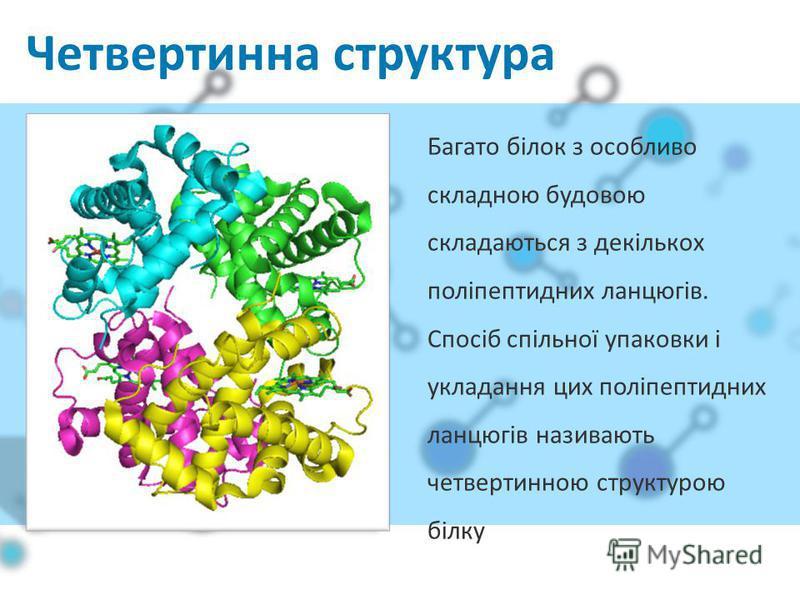 Четвертинна структура Багато білок з особливо складною будовою складаються з декількох поліпептидних ланцюгів. Спосіб спільної упаковки і укладання цих поліпептидних ланцюгів називають четвертинною структурою білку
