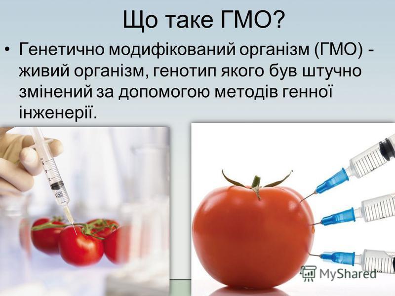 Що таке ГМО? Генетично модифікований організм (ГМО) - живий організм, генотип якого був штучно змінений за допомогою методів генної інженерії.
