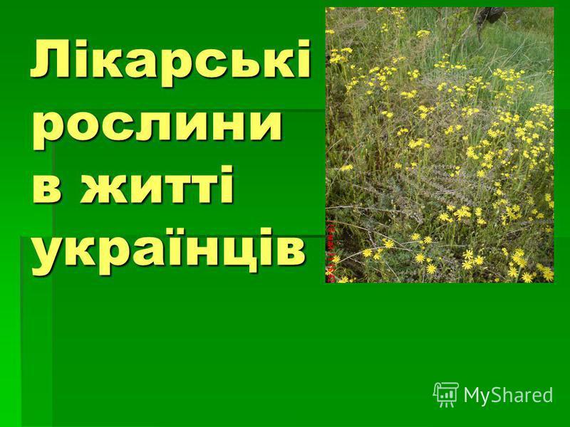 Лікарські рослини в житті українців