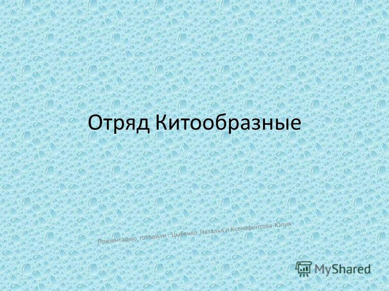 Отряд Китообразные Презентацию готовили : Цыбенко Наталья и Ксенофонтова Юлия